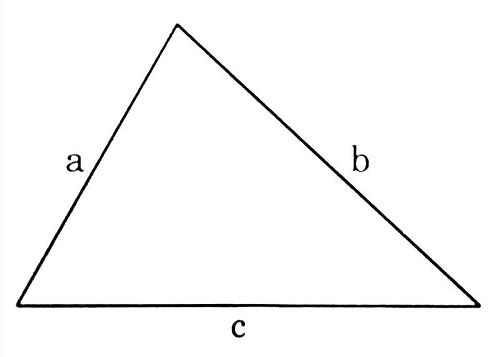 Công thức tính diện tích hình tam giác vuông, cân, đều và bài tập thực hành để các em dễ hình dung