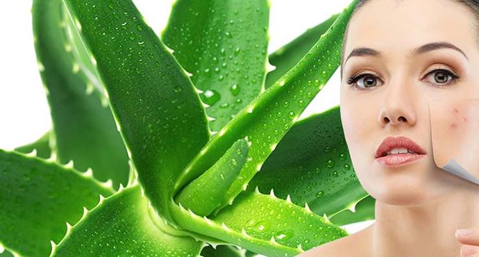 Sử dụng mặt nạ từ thiên nhiên để dưỡng da1