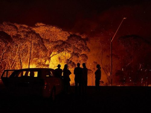 Những hình ảnh gây ám ảnh sau vụ cháy rừng tại Australia