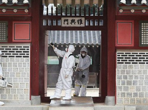 Hàn Quốc xác nhận có 52 người nhiễm Corona – mối lo trở thành ổ dịch sau Vũ Hán
