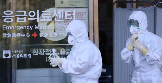 Chính phủ Hàn Quốc đang nỗ lực hết sức để phòng chống lại dịch Corona1
