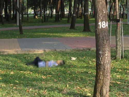 TP.HCM: Người đàn ông mặc áo bảo vệ tử vong bất thường trong công viên